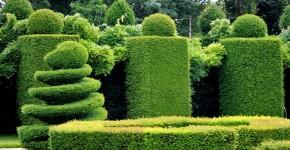 Gartenperfektion