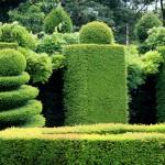 Gartendesign auf hohem Niveau