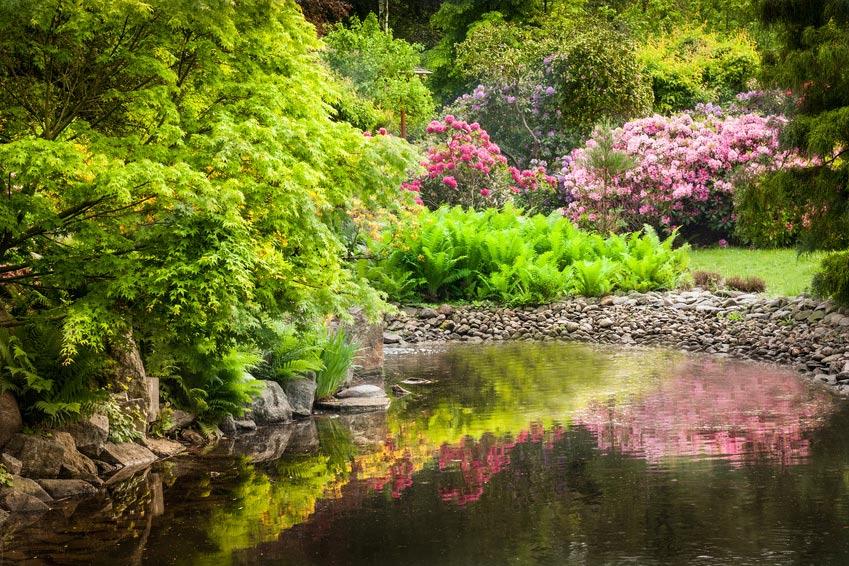 Wasseranlagen seifert gartenbau kasselseifert gartenbau kassel - Gartenbau kassel ...