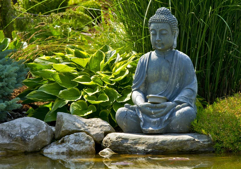japanische gärten kassel - seifert gartenbau kasselseifert, Garten ideen